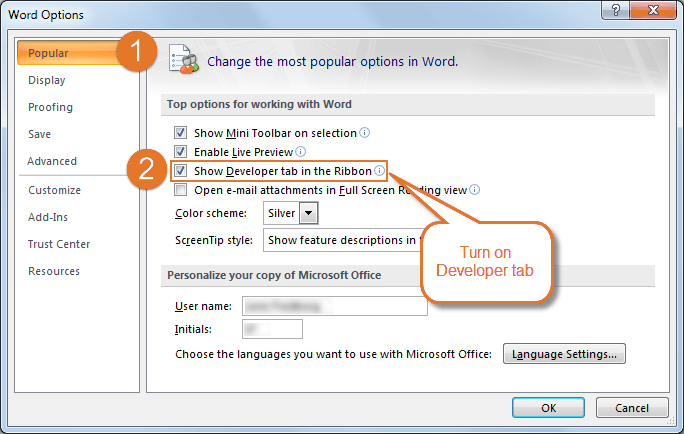 How to turn on the Developer tab in Word 2007