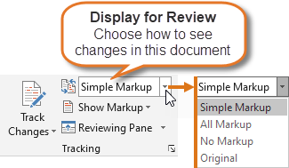 The Display for Review menu includes four display options. See the descriptions of the options below