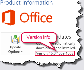 Word 2013 version details